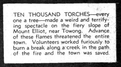 Bush fires : a pictorial survey of Victoria's most tragic week, January 8-15, 1939. p24