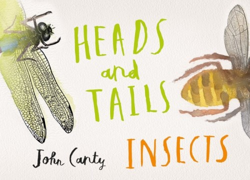 Heads and Tails; Insects