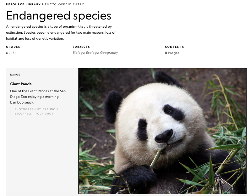 Nat Geo Endangered Species