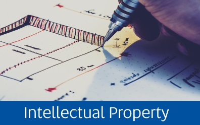 Navigate to Intellectual Property page within this guide