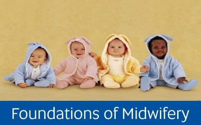 Navigate to assignment help for: foundations of midwifery
