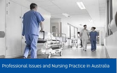 Navigate to assignment help for: professional issues and nursing practice in australia