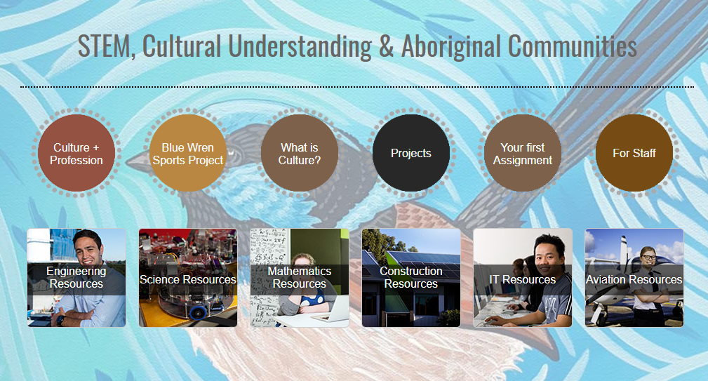 Navigate to Indigenous Content in Undergraduate Programs University webpage
