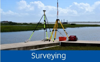 Navigate to surveying page