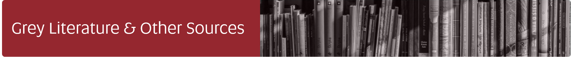 Navigate to Grey Literature and Other Sources Guide