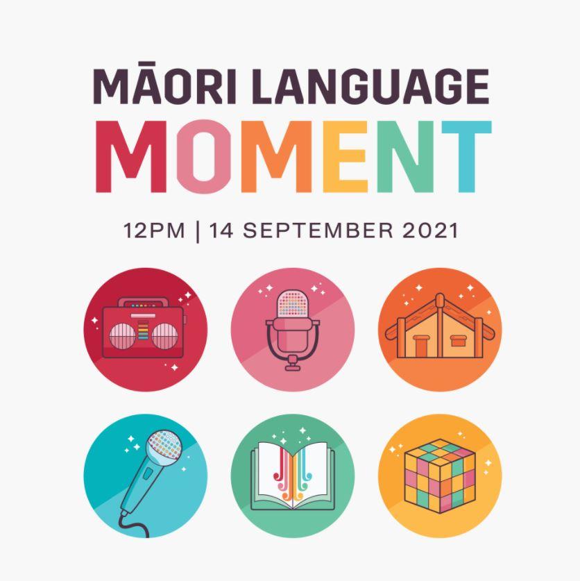 Maori Language Moment image