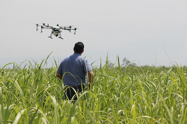 Drone in use in agriculture