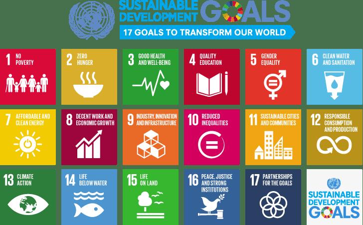 Multi-coloured blocks depicting the 17 UN Sustainable Development Goals