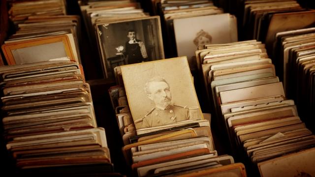 rows of Vintage portrait photographs
