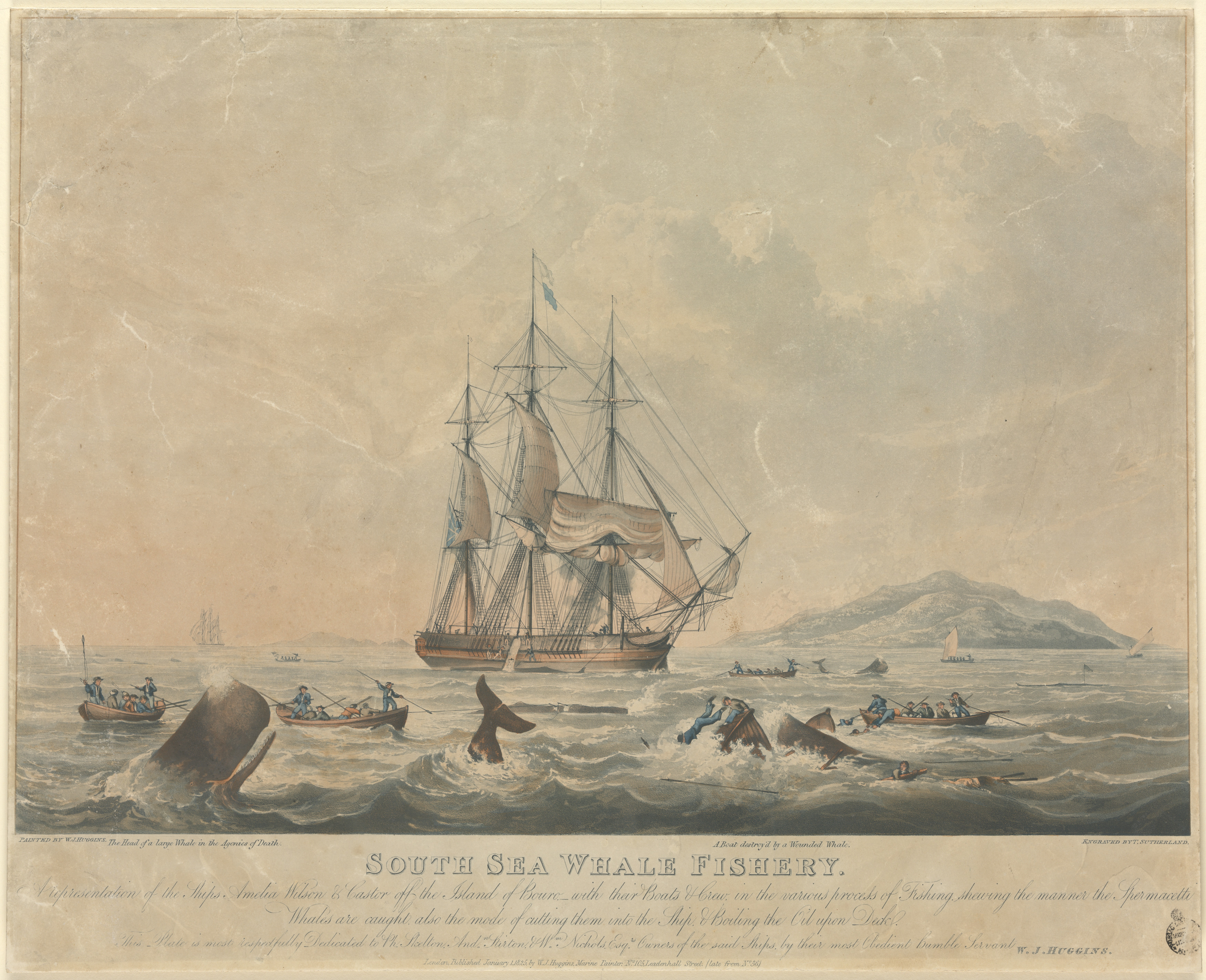 South Sea whale fishery, 1825 / painted by W. J. Huggins, engraved by T. Sutherland