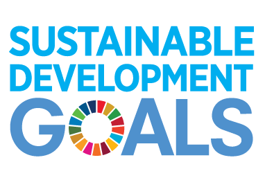 Sustainable Development Goal indicators