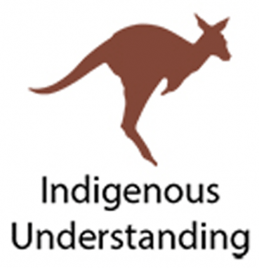 Explore the Indigenous Understanding Fiction collection