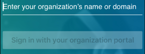 "Screenshot with cursor in front of ""Enter your organization's name or domain"
